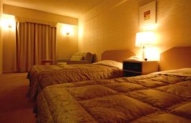 洋室   44室