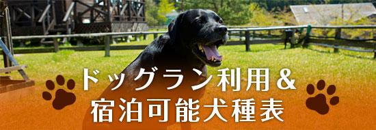 ドッグラン利用&宿泊可能犬種表