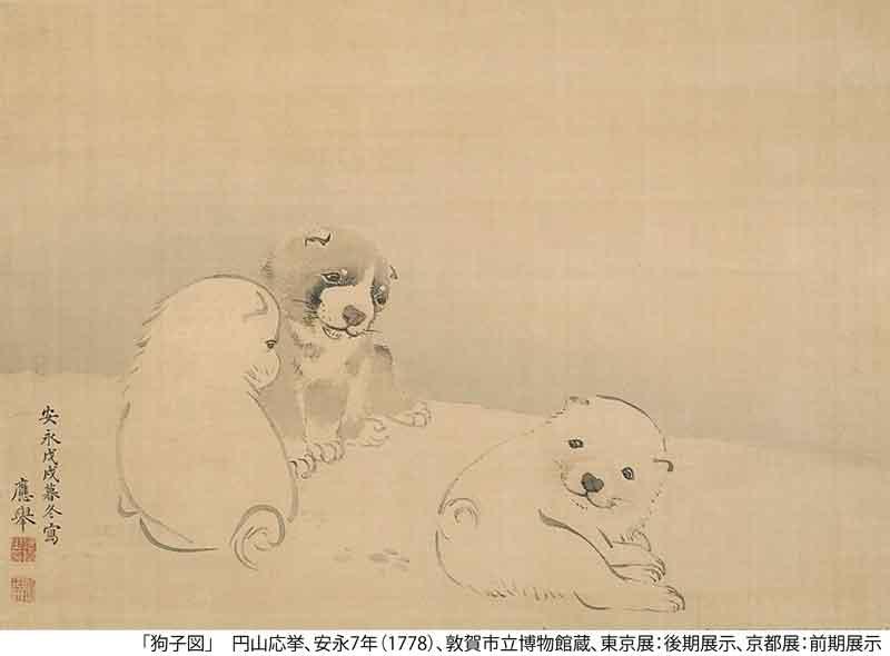京都国立近代美術館 展覧会