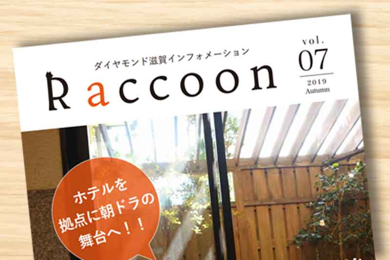 Raccoon秋号