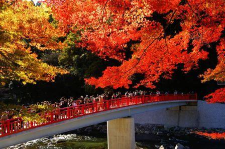 東海随一の紅葉名所『香嵐渓』と秋の若狭路をめぐる2日間