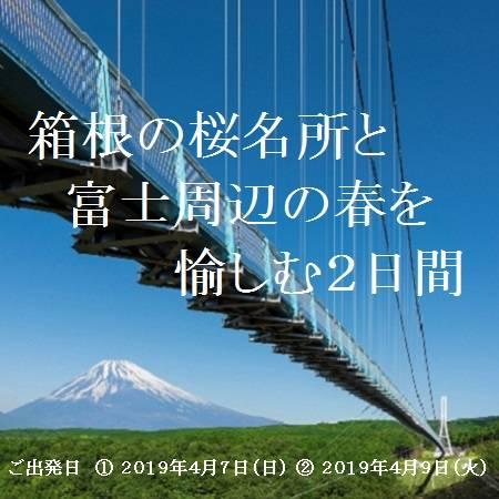 箱根周辺のお花見スポットとして人気のある「宮城野早川堤」と「秩父宮記念公園」へご案内