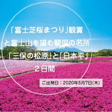 「富士芝桜まつり」にて約80万株の芝桜が咲き誇る美しい景色をお楽しみください