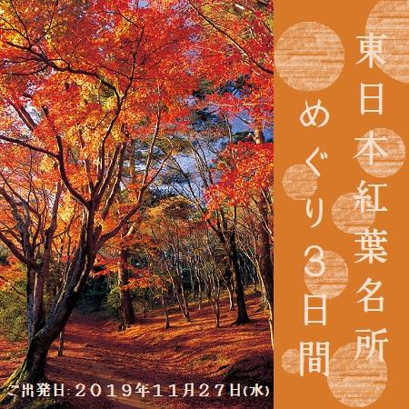 横浜から伊豆までの代表的な紅葉スポットをめぐる内容となっております。