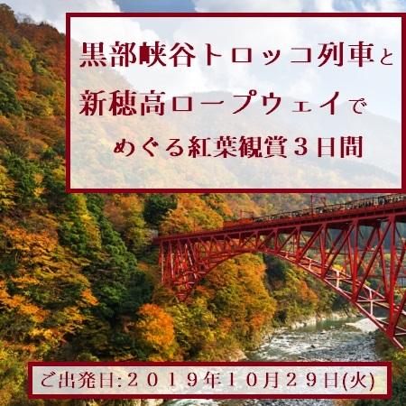 黒部峡谷では、トロッコ列車に乗りながら赤や黄色に色づいた木々の景色をお楽しみください。