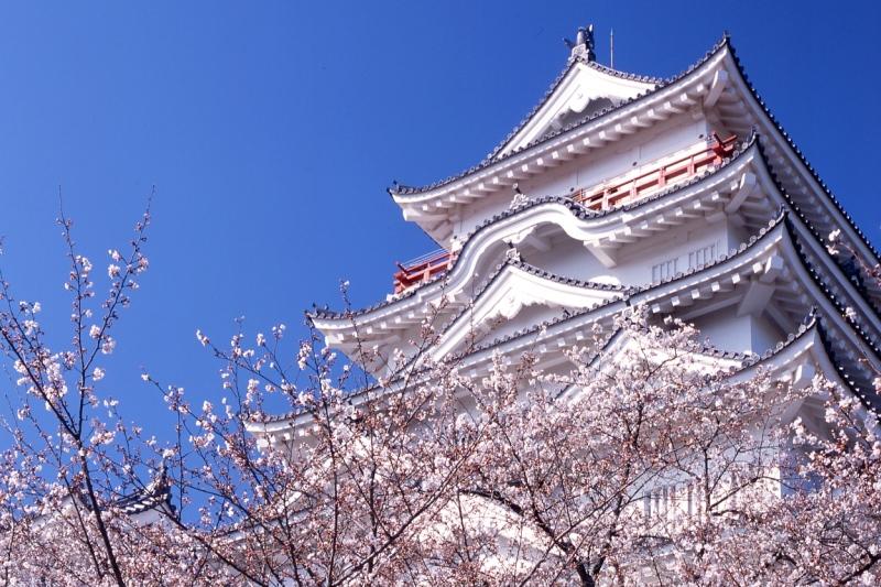 瀬戸内の桜名所めぐり3日間